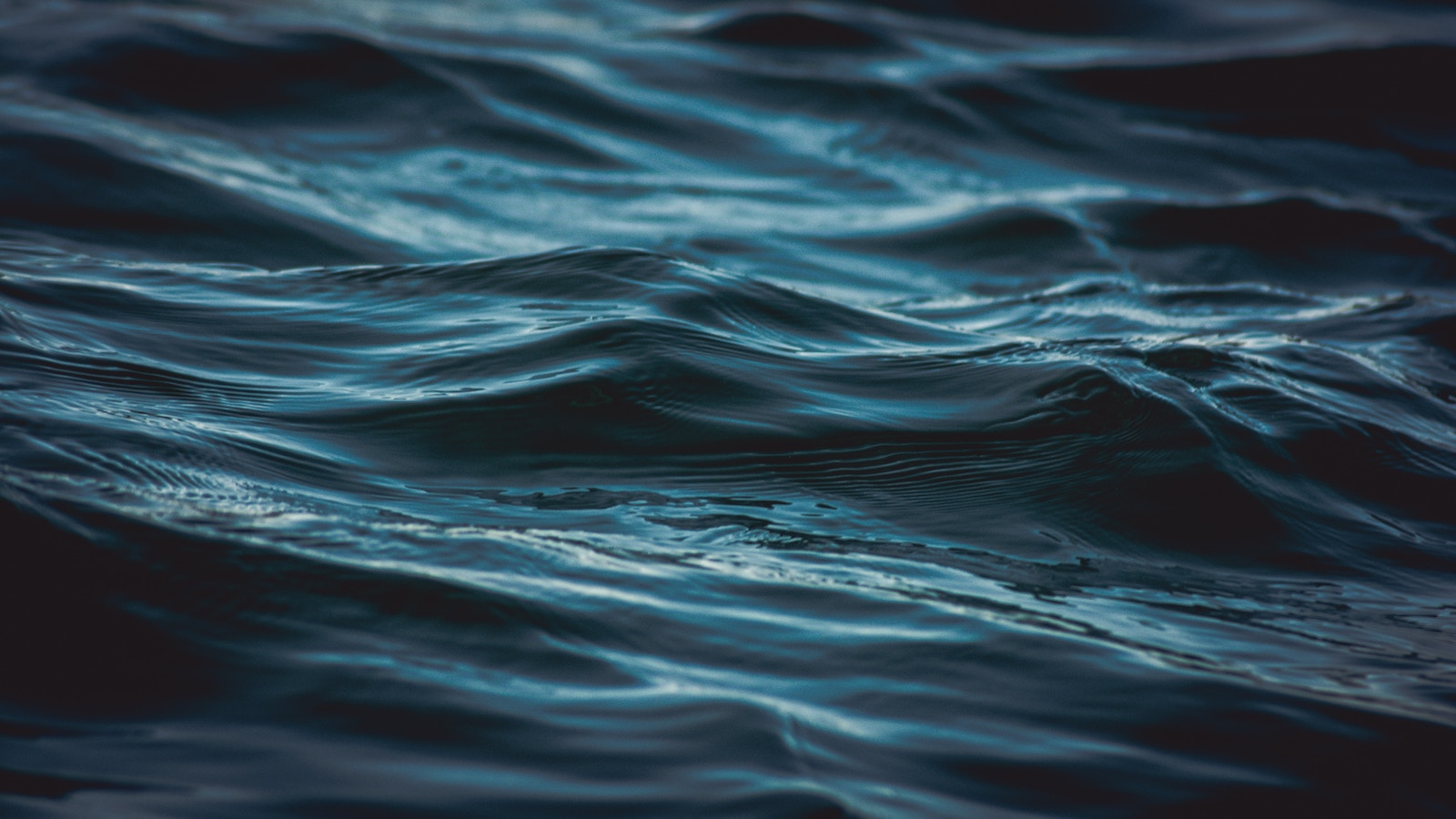 Ripples on ocean water