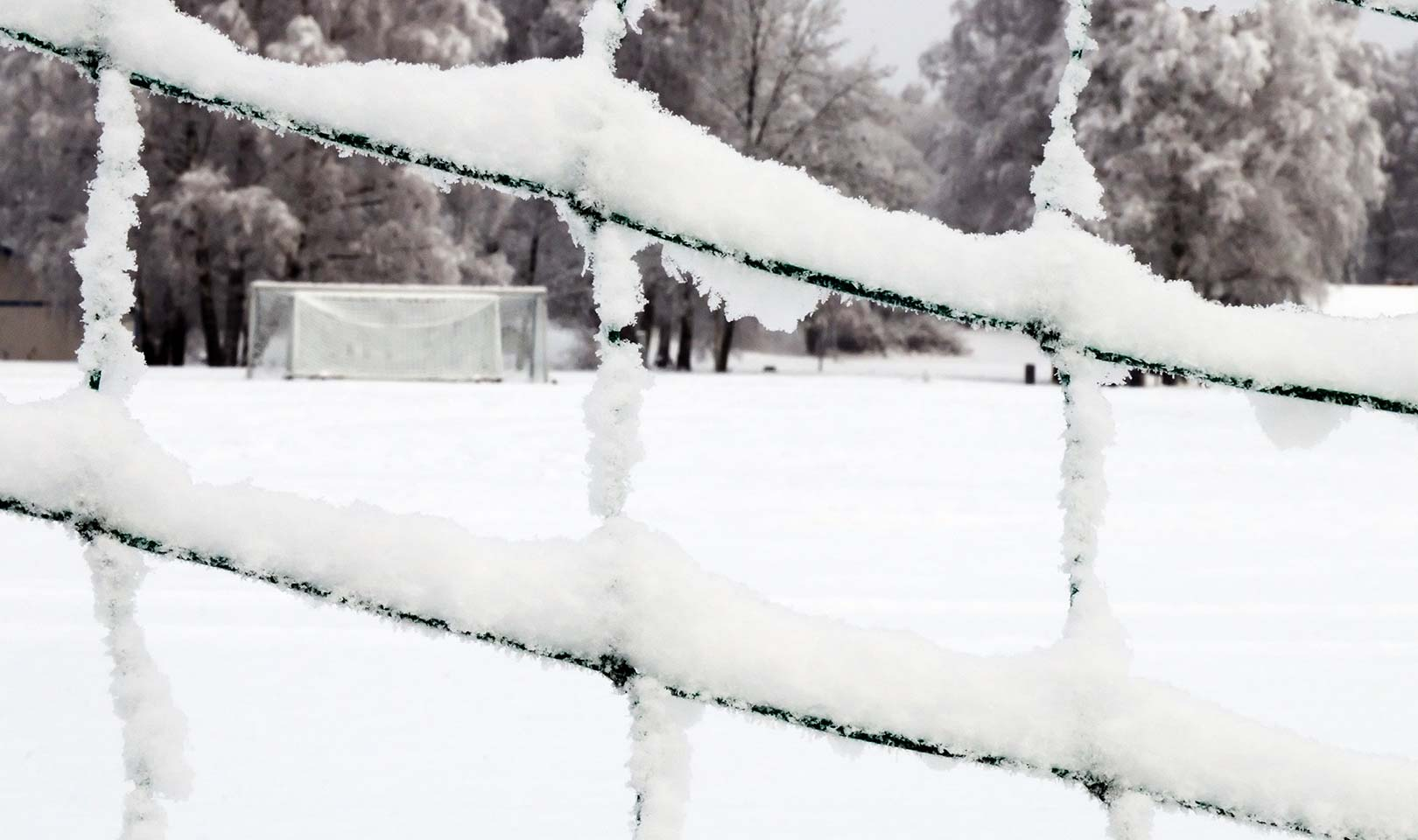 A view through a football net covered in snow.