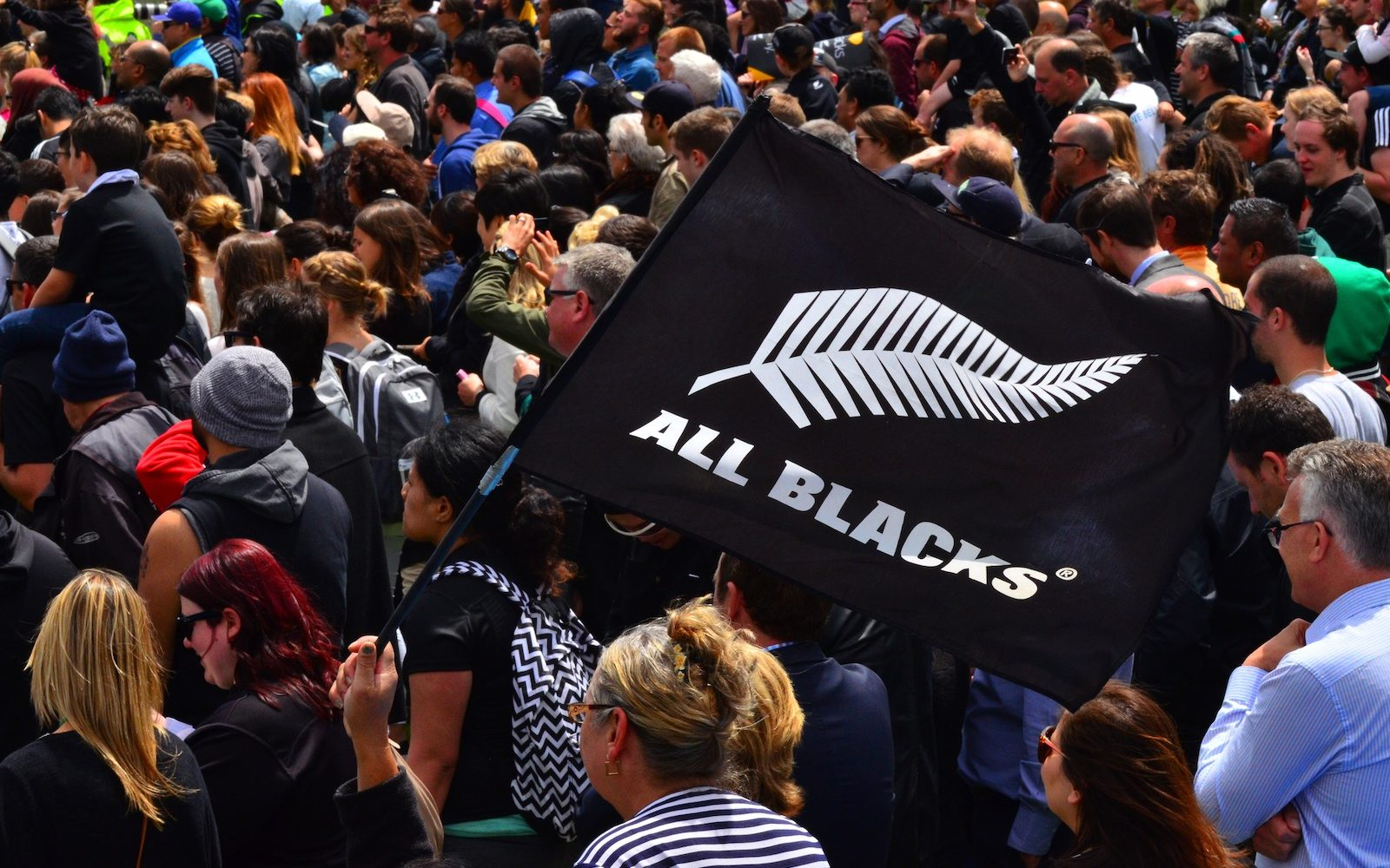 All Blacks fans in Victoria Park Auckland, New Zealand
