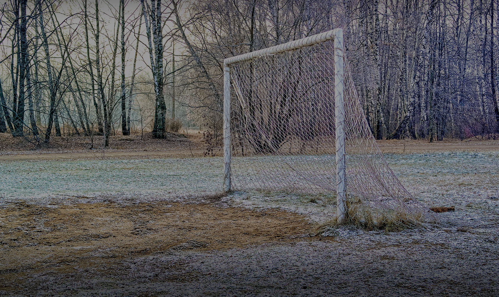 Snow Goal and Trees